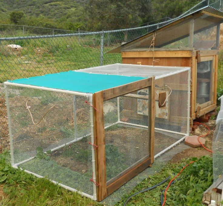 Build Pvc Chicken Tractor : The gallery for gt chicken tractor build