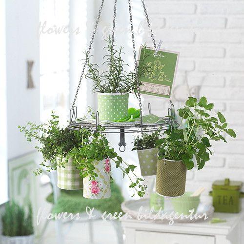 Flores e Agências Imagem verde