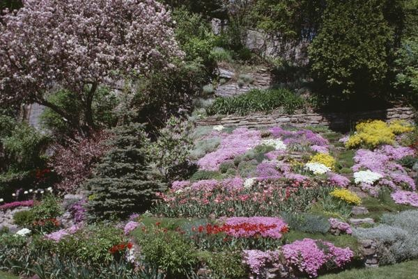 Landscaping Ideas for Yards On Slopes