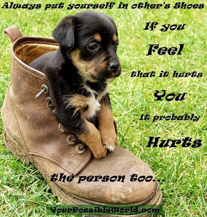 Image result for Dogs Are Family Quotes