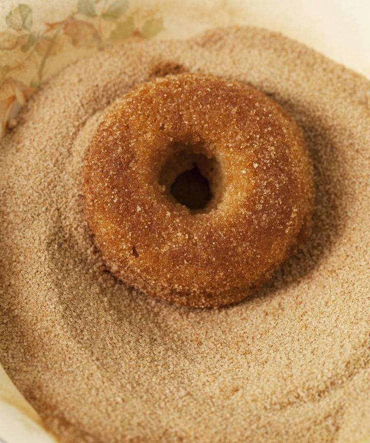 Plain Donut Baking Mix from Babycakes