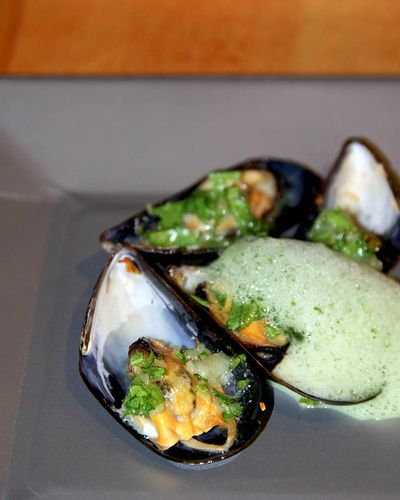 Broiled Mussels with Chive Foam | Party food recipes | Pinterest