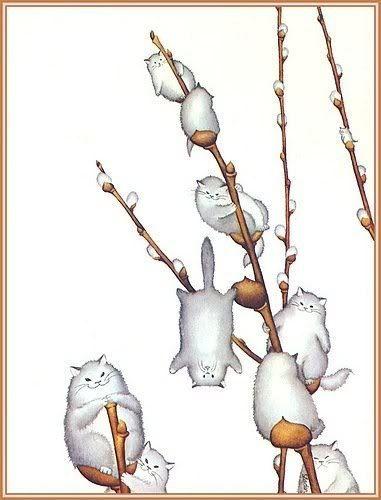 spring fluffy