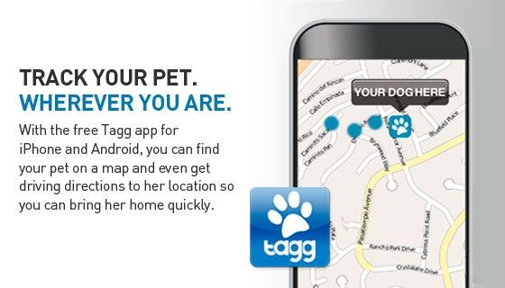 dog tracking app on iphone commercial