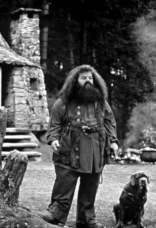 Hagrid & Fang | Harry Potter | Pinterest