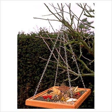 Bird feeding tray with mesh base with apple slices, millet sprays and fresh berries