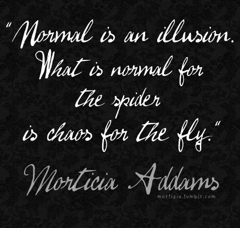 "realityscape:    ""Normal is an illusion. What is normal for the spider is chaos for the fly"""