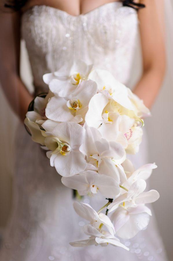Cascade Orchid Bridal Bouquet : Cascading orchid bouquet