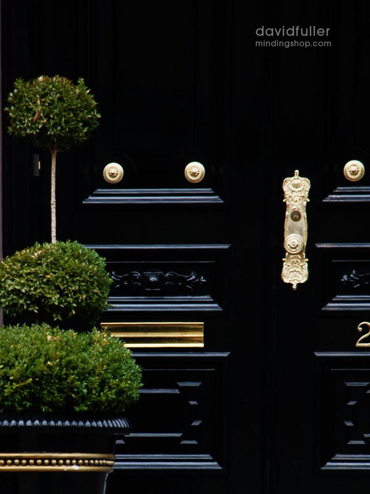 chic black lacquered door
