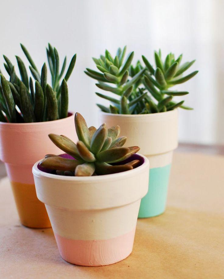 color block terra cotta pots
