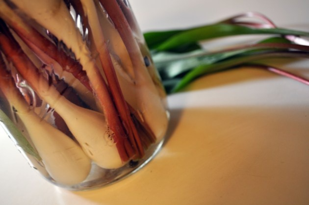 Ramps (Compound Butter & Pickles) | the Fruit of Todd's Labor | Pinte...