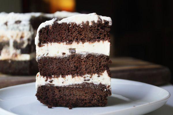Chocolate Meringue And Mint Chip Ice Cream Cake Recipes — Dishmaps