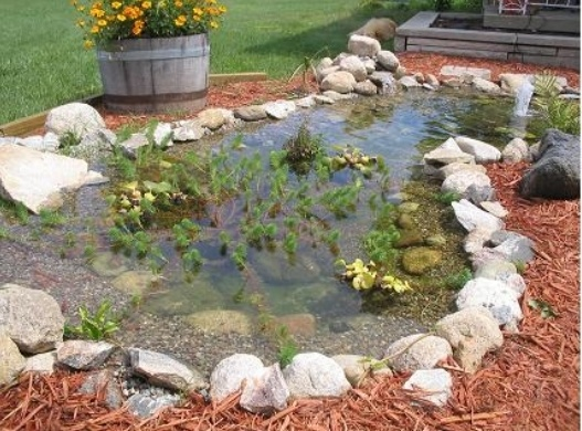 Simple front yard fish pond outside pinterest for Simple koi pond