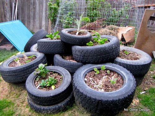 backyard landscaping ideas novices