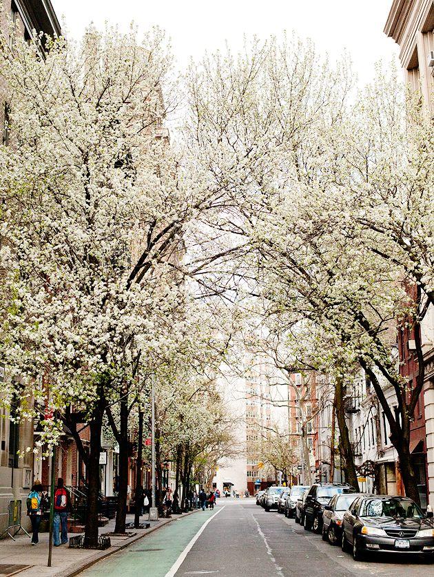 Spring in the west village vaggiare da soli nel mondo for The village nyc
