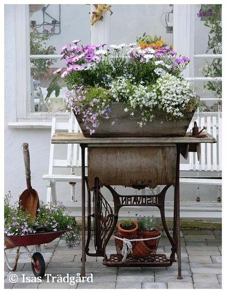 Old sewing machine used as a planter base