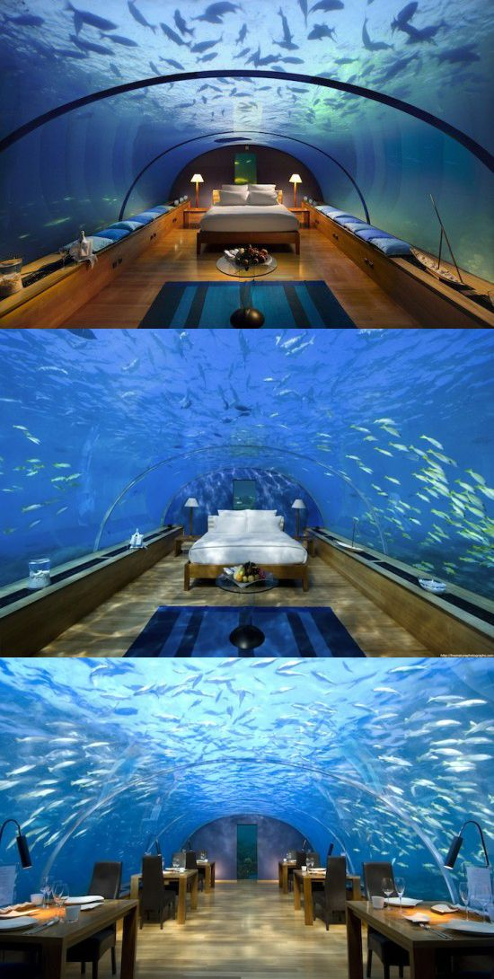Hilton maldives resort spa places to see pinterest for Hilton hotels in maldives