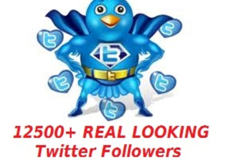 Bingo! get you 12500+ real looking twitter followers within 12 hours without password on fiverr.com