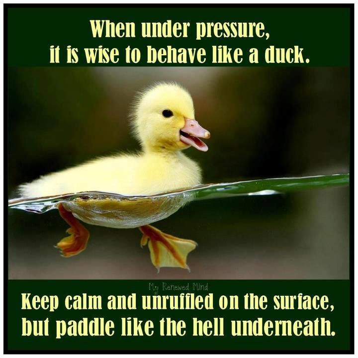 proxy - Grace under pressure - Quotable Quotes