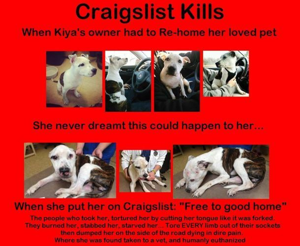 STOP Craigslist from Advertising Animals.