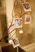 photos strung above on twine with clothes pins and on the tree vintage shipping tags with advice -- bird ornaments on both tree and string