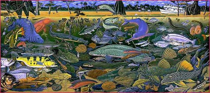 Fishes of Amazonia