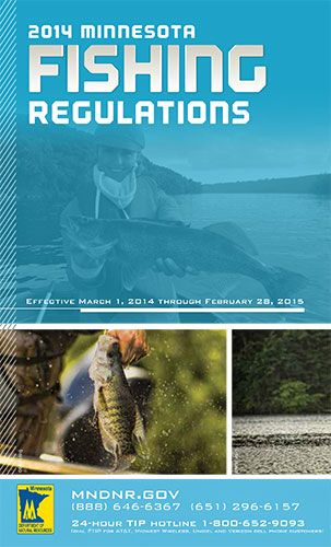 fishing regulations minnesota dnr hunting fishing