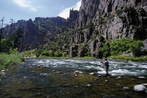 Pin by denice mccarty on got places to go pinterest for Gunnison river fly fishing