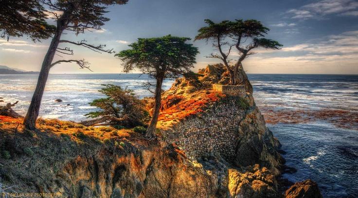 HDR Pebble Beach Icon