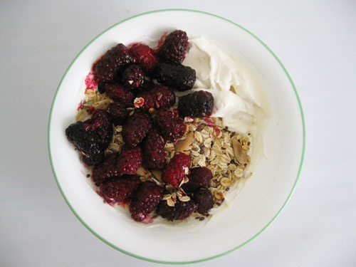 Toasted Oatmeal | For the love of food | Pinterest