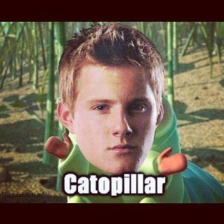 cato s view in the hunger games Cato volunteered to participate as the district 2 male in the 74th hunger games at the age of eighteen he received a training score of 10 cato had particular skill in fighting with a sword as well as hand-to-hand combat.