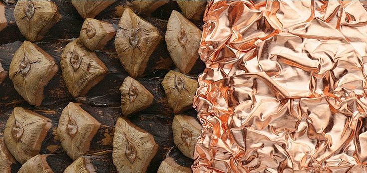Iris Bodemer brooch -'ingredients' - copper, pine cone scales, 2008 - detail