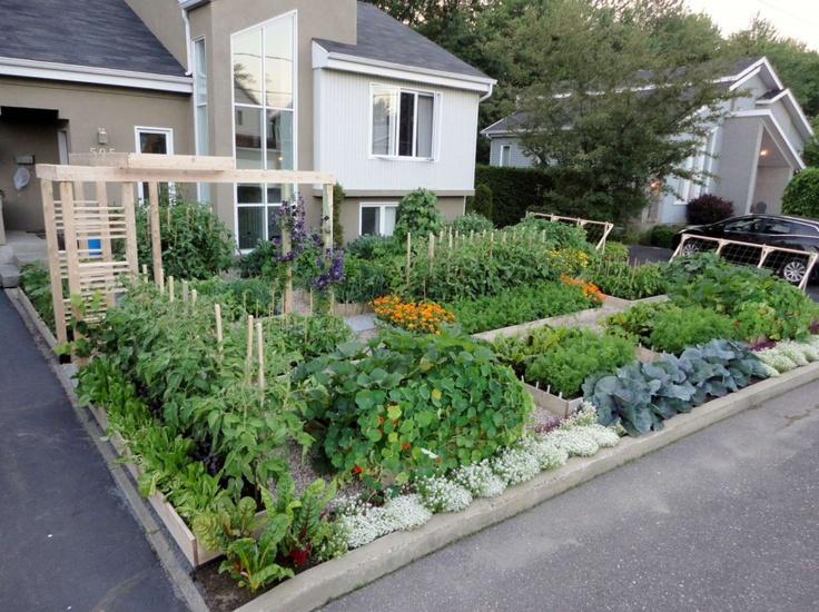 Beautiful Garden Garden Urban Gardens Tips Pinterest 400 x 300