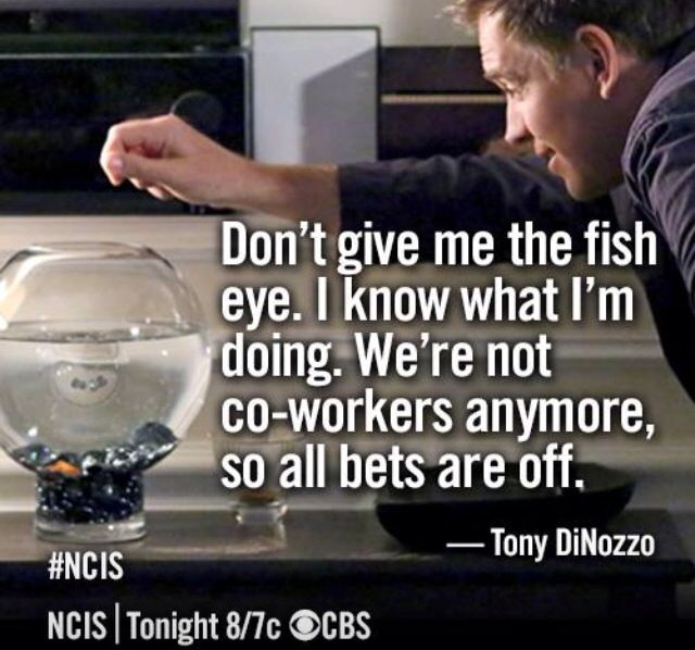 Tony Quote NCIS