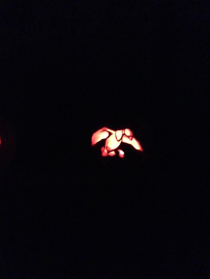 Duck commander logo pumpkin carving pumpkins