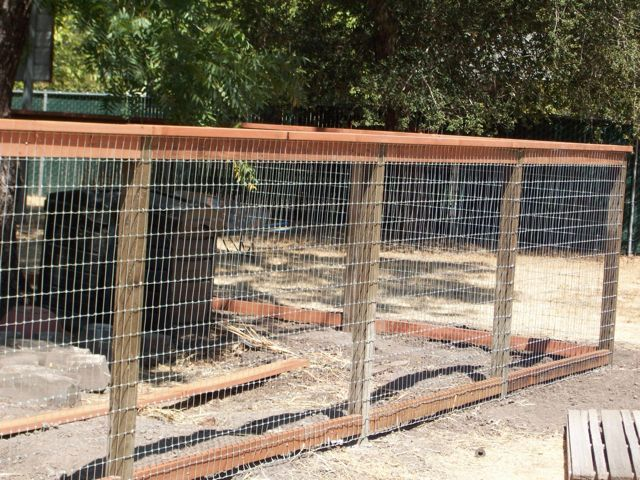 backyard fence ideas for dogs great dog fencing outdoor ideas