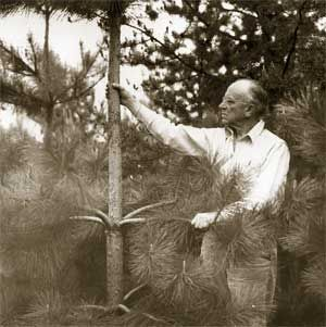 aldo review land ethic The land ethic of aldo leopold and aldo leopold's idea of the land ethic westminster review was established as a medium for articles on evolution as a.