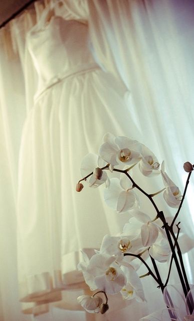 massachusetts quincy wedding dresses vendors