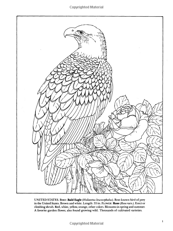 State Birds And Flowers Coloring Book Dover Pictorial Pin By Nomadic Hermit On Colouring Pagestemplates