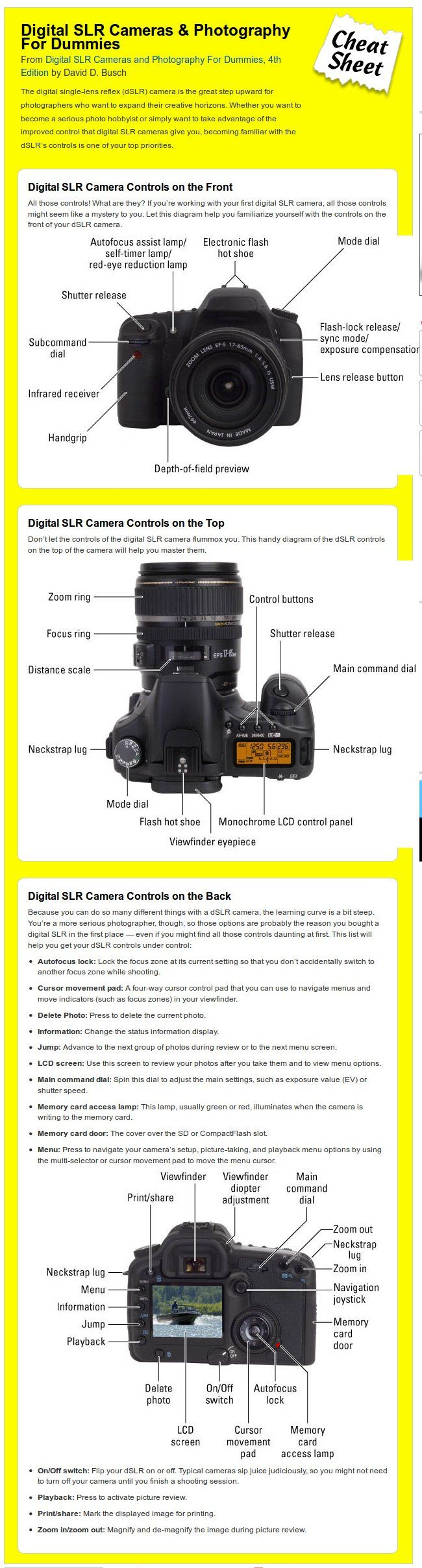 Digital slr cameras and photography for dummies book dvd bundle David Beckham 2018 Pictures, Photos Images - Zimbio
