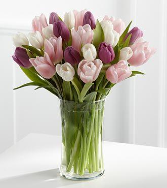 Purple TulipsPurple And White Tulips