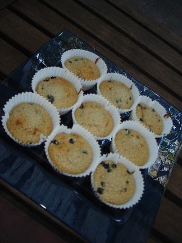 Blueberry Bran Muffins | #1 Breads, Muffins, Rolls, Biscuits, Scones ...