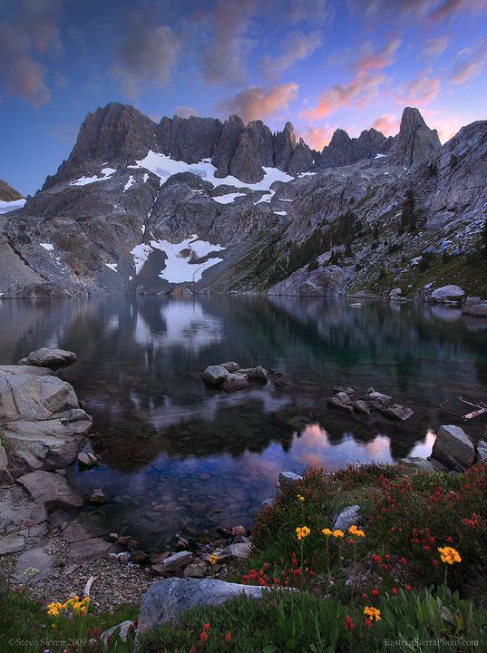 Wildflowers in Ansel Adams Wilderness by Steve Sieren, via 500px