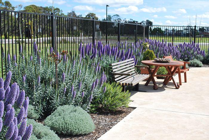Sensory garden plans google search sensory garden for Low maintenance gardens for the elderly