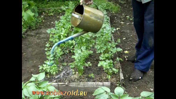Как сделать органическое удобрение из травы - Модная точка