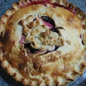 Grape & #ApplePie - Concords play will with tart apples in this pie ...