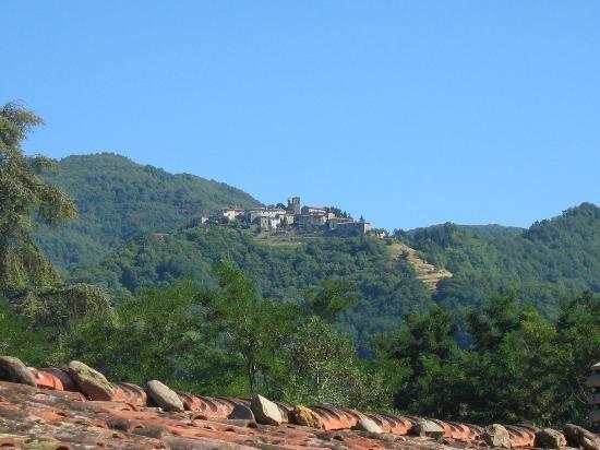 Barga Italy  city photos : Barga, Italy in Tuscany. | ITALY | Pinterest