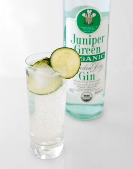 Virgin Gin And Tonic Recipes — Dishmaps