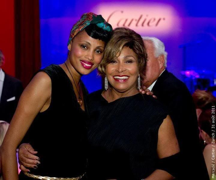 Where Are Tina Turner's Sons | Tina Turner Gives Up United States ...
