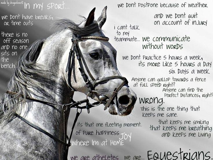 Horse People Quotes. QuotesGram